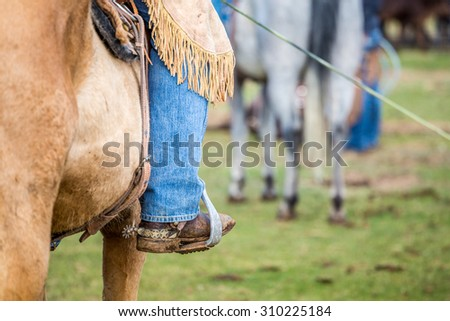 Cowboy riding on a brown horse . - stock photo