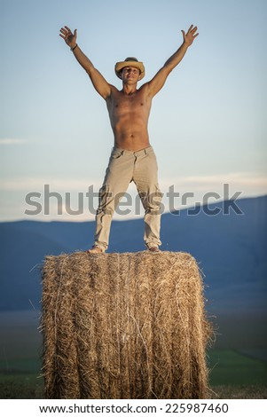 Cowboy standing on top of hay bale in a Valley - stock photo