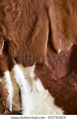 Cowhide - stock photo