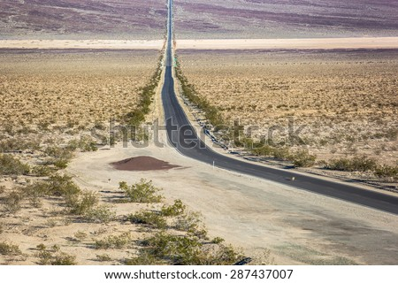 Coyotes crossing highway 190 in Panamint Valley, Death Valley National Park
