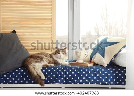 Cozy Window Seat With A Cat Resting On It And A Cup Of Hot Drink
