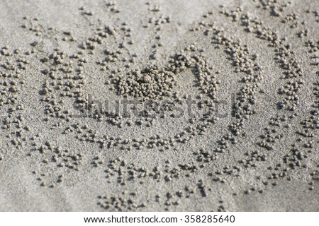 Crab design/Specific design made by little crabs on a beach in Bali, Indonesia when removing the excavated sand through tiny sand balls from the holes they dig to lay off eggs. - stock photo