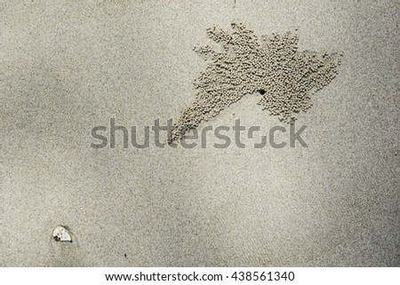 Crab hole design made by small crabs on the beach. - stock photo
