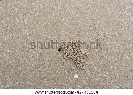 crab hole, home of crab on the beach - stock photo