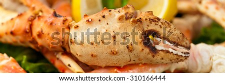 Crab Legs. Macro with shallow dof. Selective focus on claw. Panoramic image. - stock photo