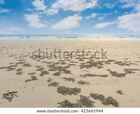 Crab sand balls and crab holes on Thailand beach - stock photo