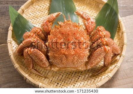 crabs - stock photo