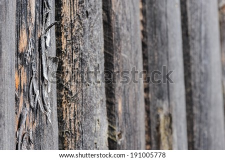 cracked aged weathered wooden boards, selective focus