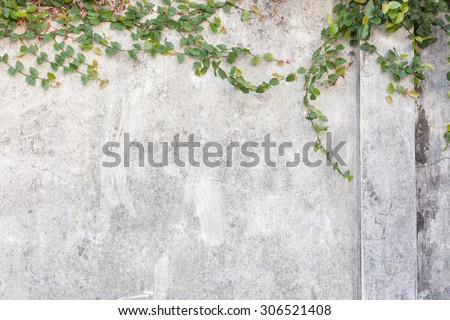 Cracked concrete wall background, old wall - stock photo