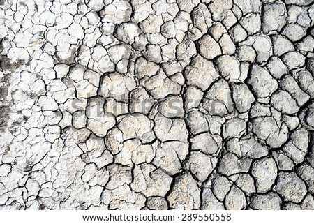 Cracked dry earth texture background / Cracked dry earth  - stock photo