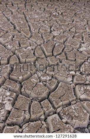 Cracked Earth - stock photo