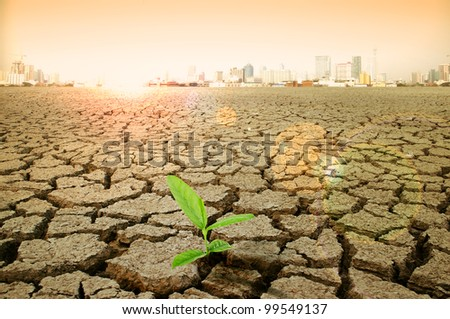 cracked earth - concept image of global warming.