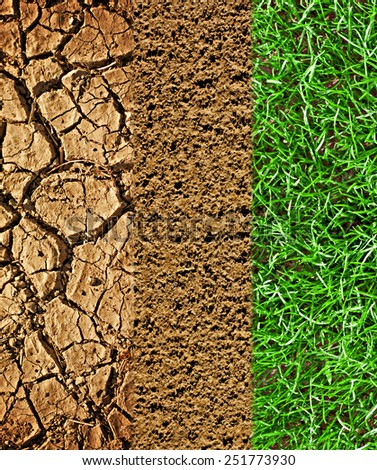 Cracked earth, prepared soil and newly sown grass - stock photo