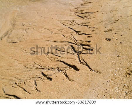 Cracked earth texture with water path - stock photo