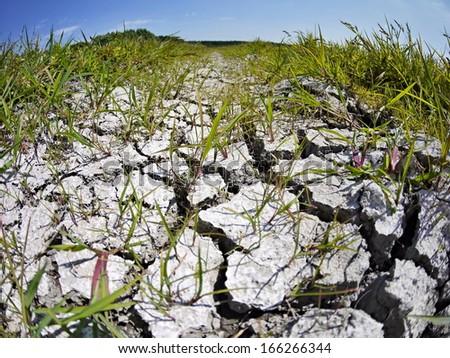cracked field soil - stock photo