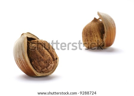 Cracked Hazelnuts isolated on white background - stock photo