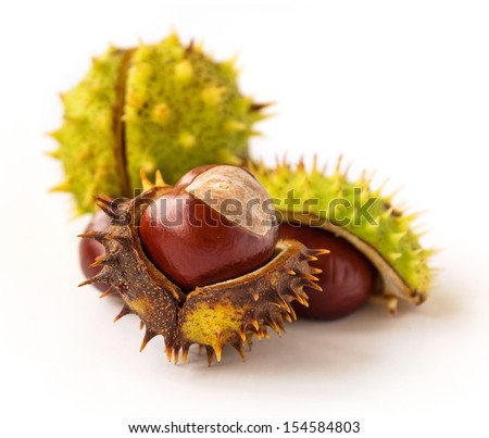 Cracked horse chestnuts isolated on white