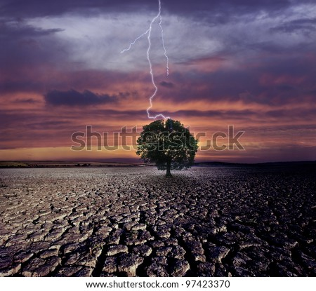 Cracked land and the lightning strikes on the single tree - stock photo