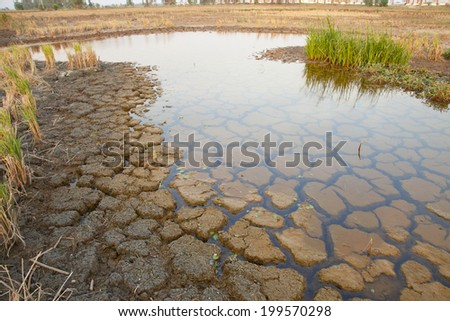 Cracked soil in water., Cracked Earth  - stock photo