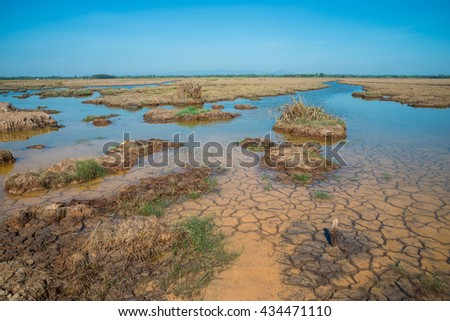 Cracked soil in water., Cracked Earth