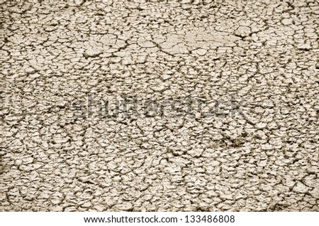 Cracked Soil Photo Backgrou in sunny day - stock photo