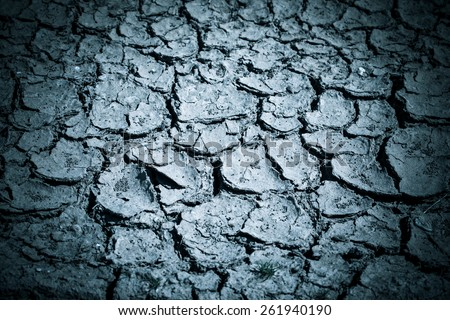 cracked soil. Shallow depth of field. vertical shot - stock photo