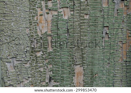 Cracked wooden texture, yellow and gray colors  - stock photo