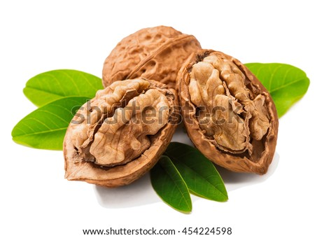 cracking walnuts with fresh leaves on white