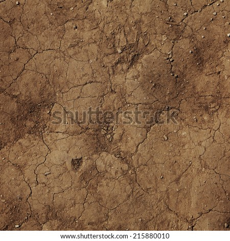 cracks in the ground. - stock photo