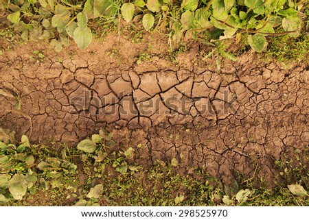 Cracks on a surface of a clay ground after rain - stock photo