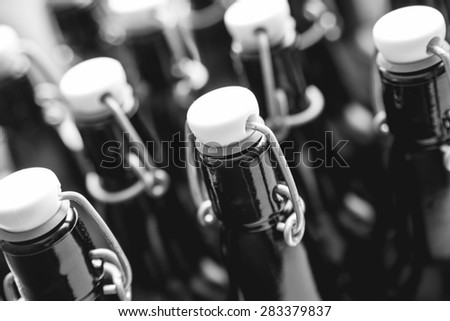 Craft beer bottles. Alcohol, brewing, beer and drinking concept. Black and white