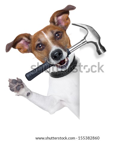 craftsman dog with hammer in mouth beside a white blank banner - stock photo