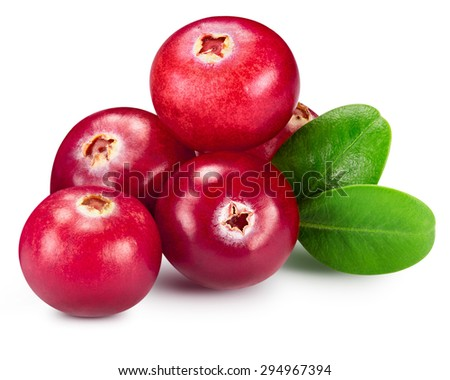 cranberries berry isolated on white Clipping Path - stock photo