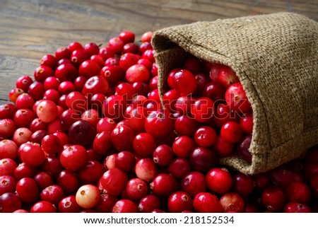 Cranberries in fabric bag on wooden background - stock photo
