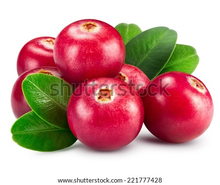 cranberries isolated on white Clipping Path  - stock photo