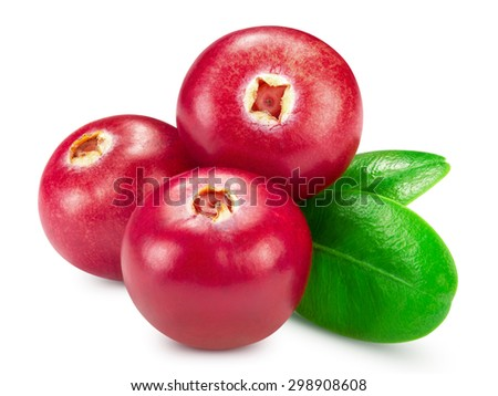 cranberries isolated on white. Clipping Path