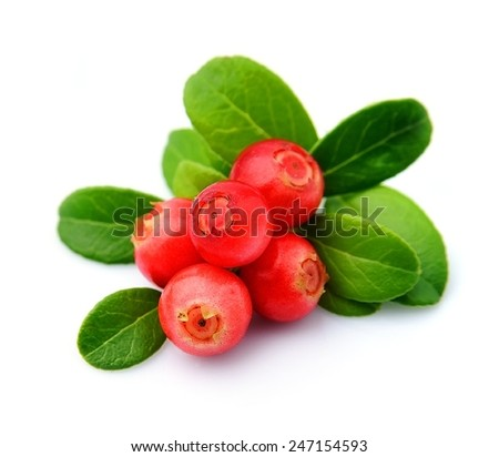 Cranberries with leaves close up on white background.