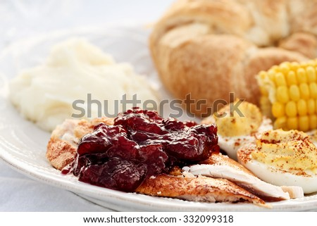 Cranberry Sauce over roast Thanksgiving turkey with all the fixings. Extreme shallow depth of field with selective focus on cranberry sauce. - stock photo