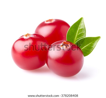 Cranberry with leaf - stock photo