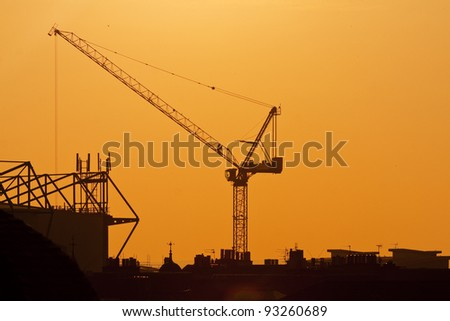 Crane on a sunset background
