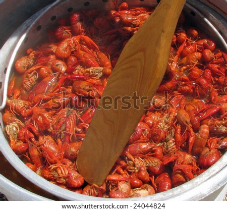 Crawfish being stirred with a boat paddle with being cooked on an outdoor cooker. - stock photo
