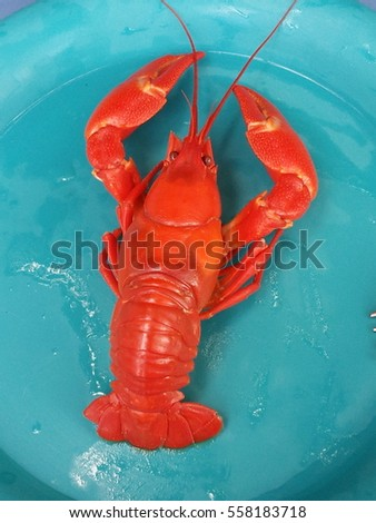 Crayfish cooked