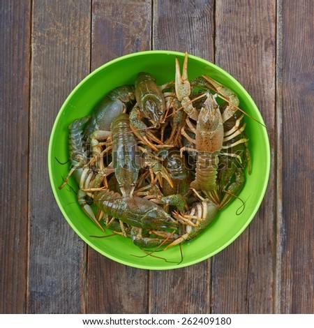Crayfish isssolated on white background - stock photo