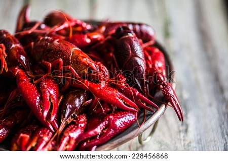 Crayfish on wooden background - stock photo