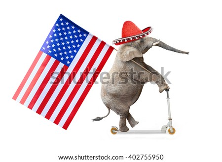 Crazy elephant with sombrero and american flag driving a push scooter. Republican elephant going to elections. Digital artwork on political theme. - stock photo