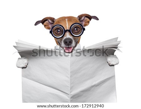 crazy silly dog holding a blank newspaper - stock photo