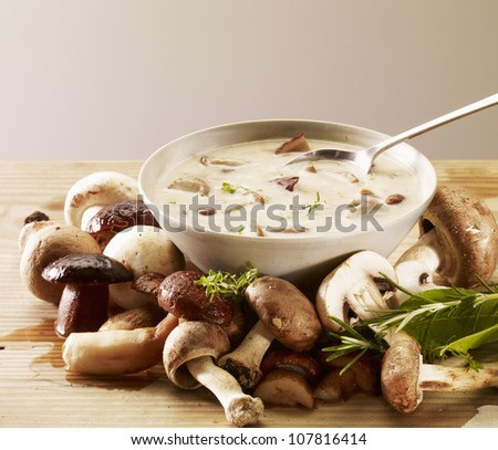 Cream of cep soup - stock photo