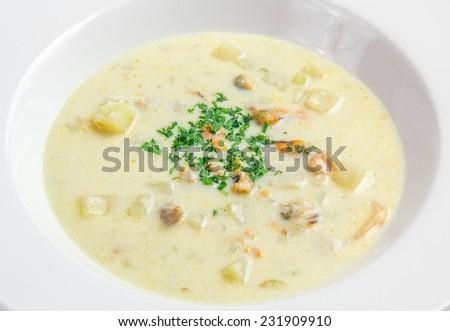 Cream Soup in white plate - stock photo