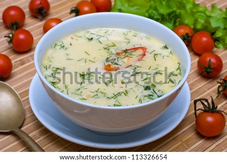 Cream soup with chicken broth with vegetables - stock photo