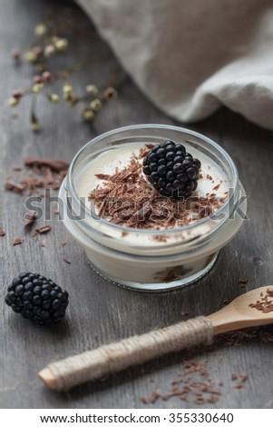 Creamy homemade tiramisu with chocolate chips and fresh blackberry - stock photo